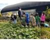 꼬마농부들의 농작물 수확